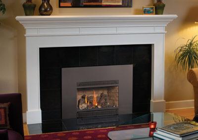 FireplaceXtrordinair DVI Gas Insert